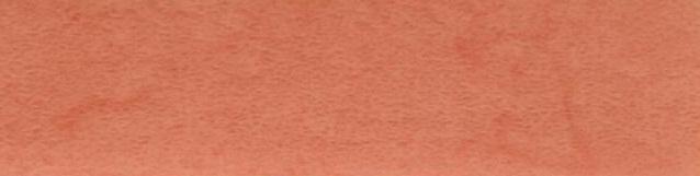 Терра лосось072.jpg