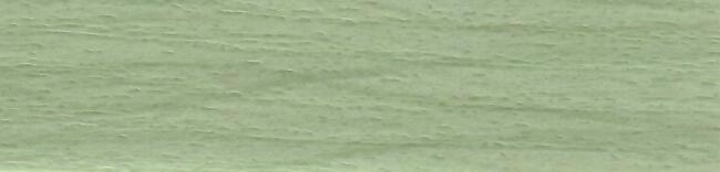 Берёза зелёная 189V.jpg