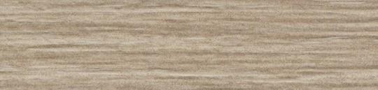 Дуб Орлеанский песочный.jpg