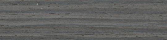 Дуб Гладстоун сепия.jpg