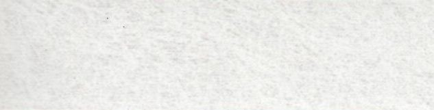белый шелк.JPG